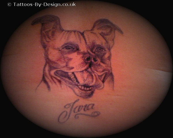 my staffordshire bull terrier tattoo. Black Bedroom Furniture Sets. Home Design Ideas