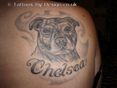 my staffy tattoo. Black Bedroom Furniture Sets. Home Design Ideas