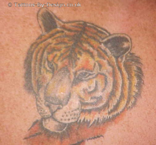 siberian tiger tattoo. Black Bedroom Furniture Sets. Home Design Ideas